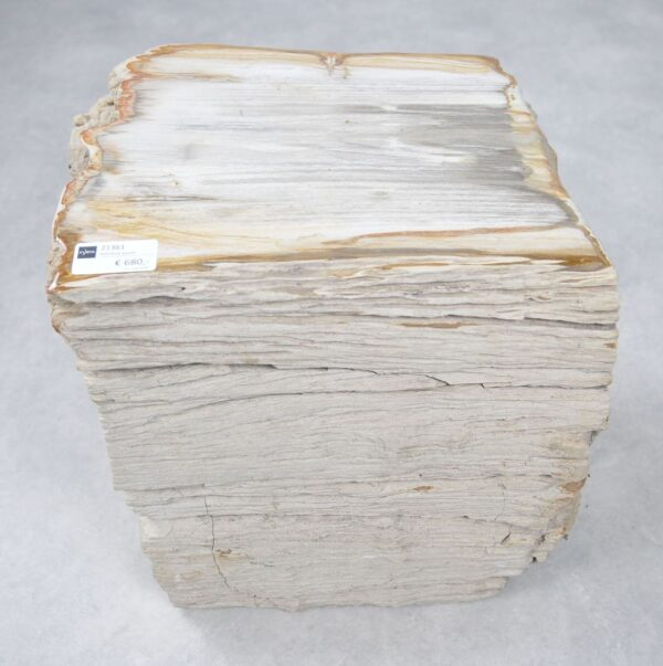 Bijzettafel versteend hout 21361