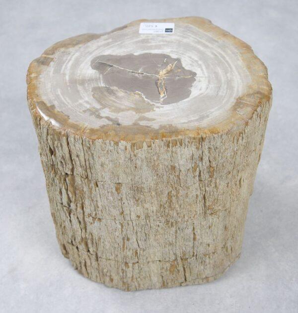 Bijzettafel versteend hout 21367