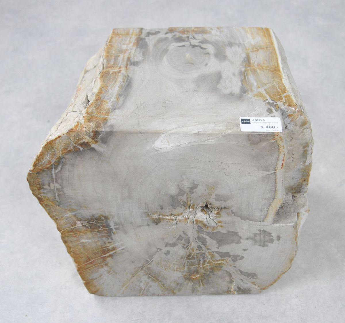 Bijzettafel versteend hout 24014