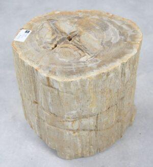 Bijzettafel versteend hout 25347