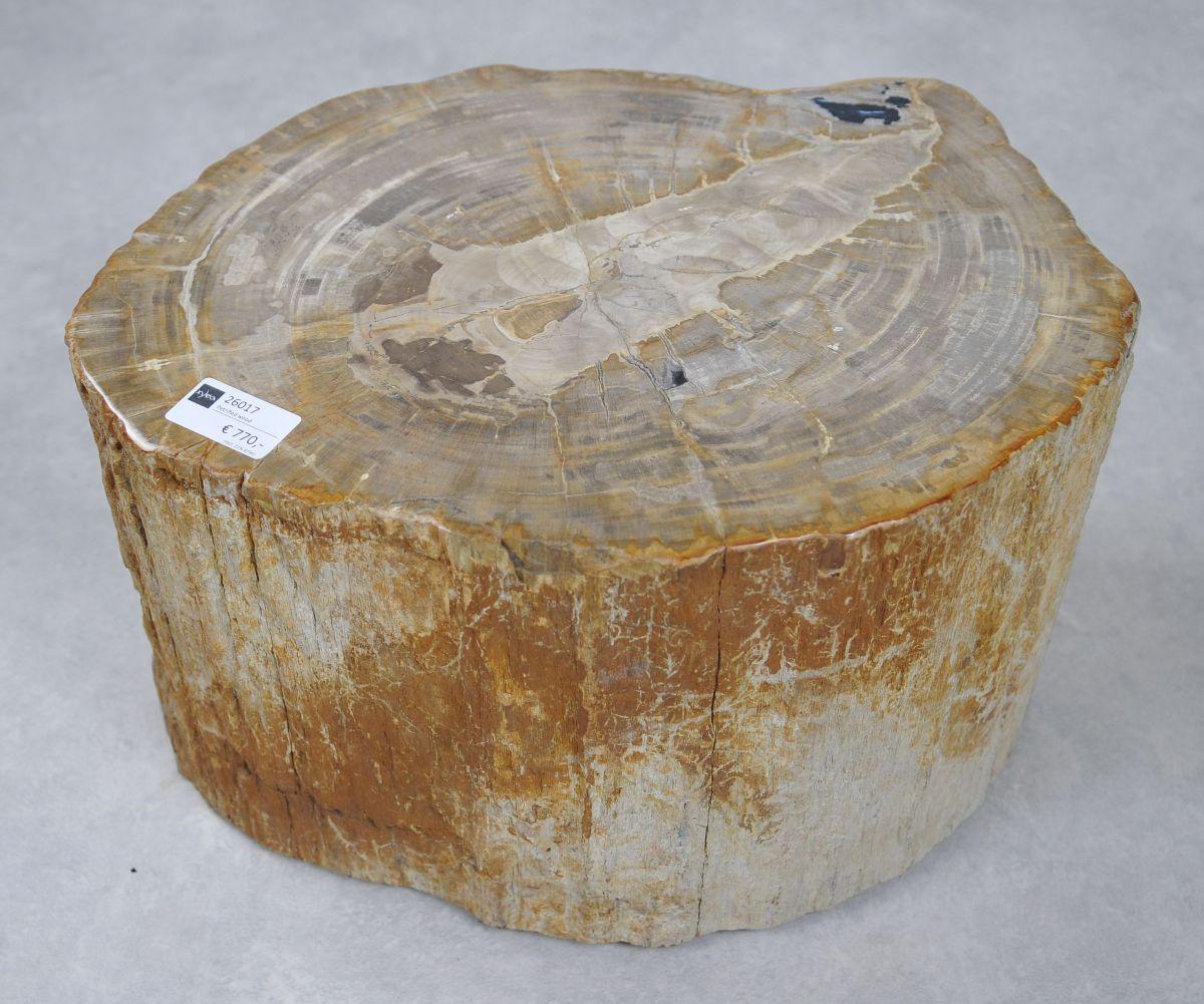 Bijzettafel versteend hout 26017