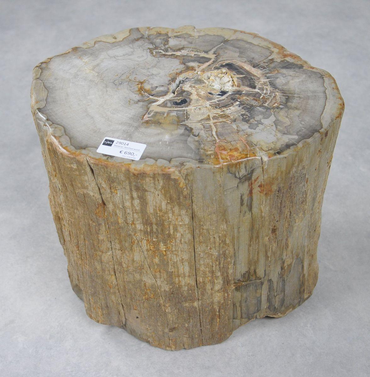 Bijzettafel versteend hout 29014