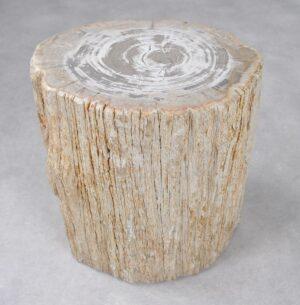 Bijzettafel versteend hout 34019