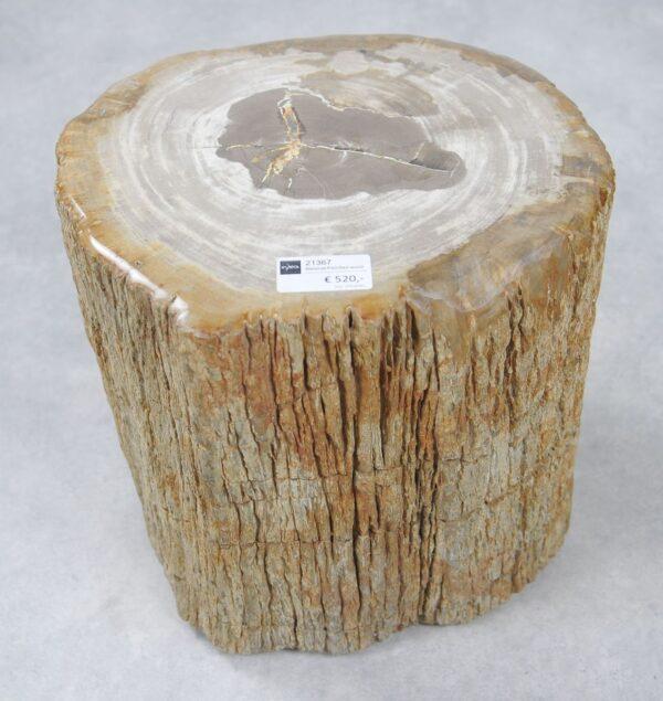 Mesilla madera petrificada 21367