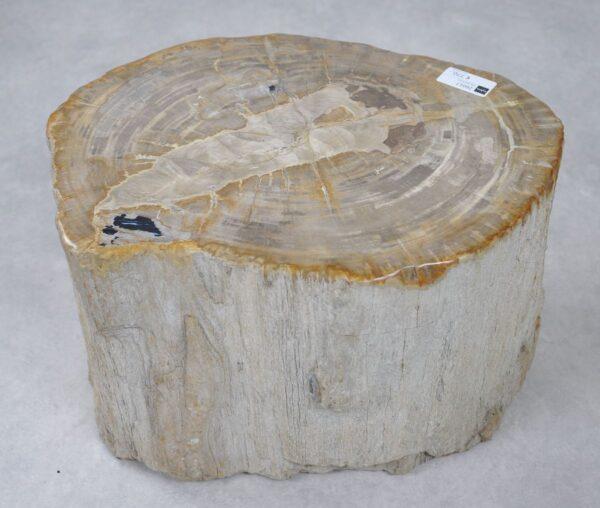 Mesilla madera petrificada 26017