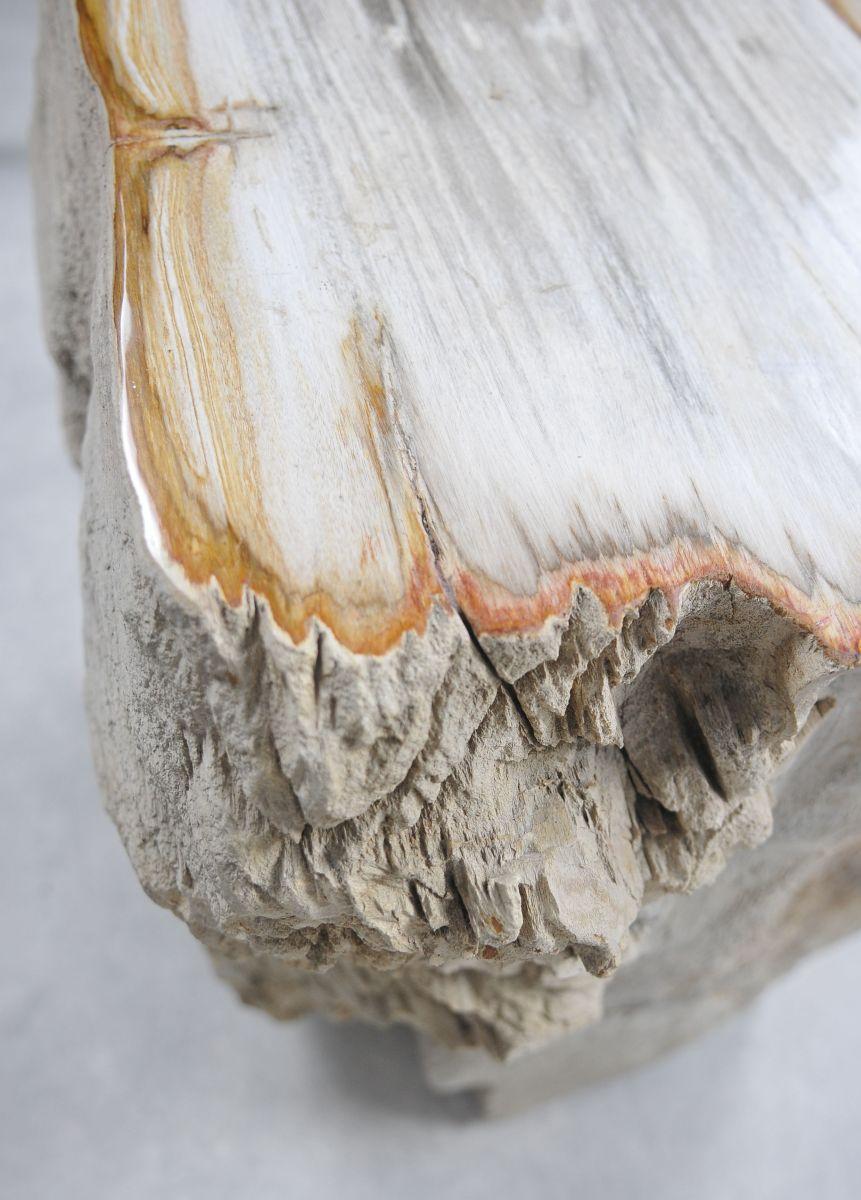 Side table petrified wood 21361