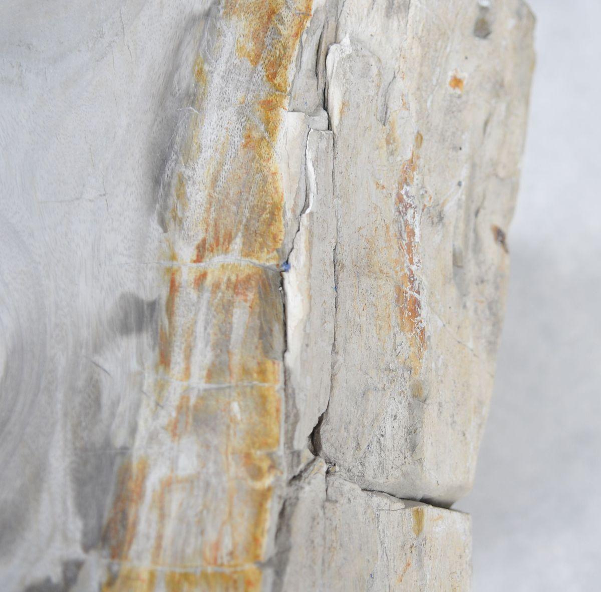 Side table petrified wood 24014