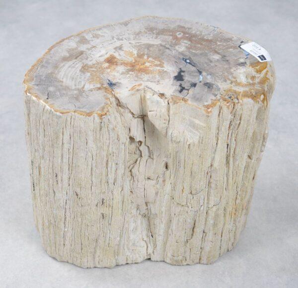 Table d'appoint bois p?trifi? 16119