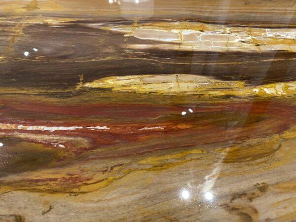 Couchtisch versteinertes Holz 32302
