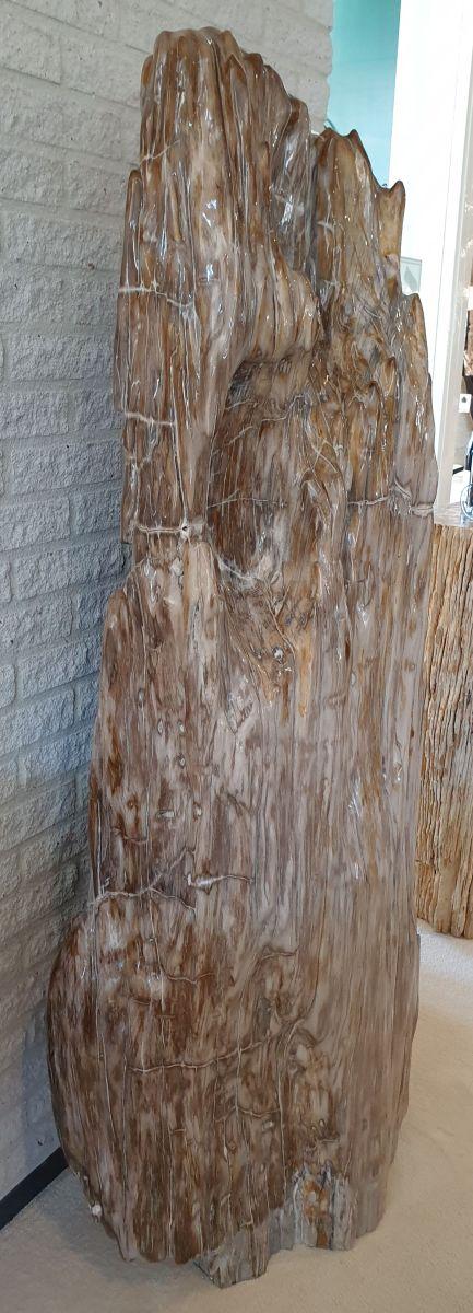 Escultura madera petrificada 14102