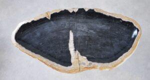 Plato madera petrificada 35171