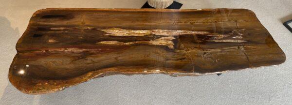 Salontafel versteend hout 32302