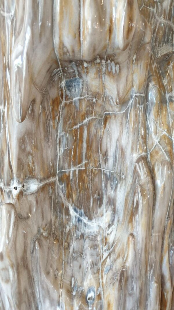 Sculpture bois pétrifié 14102
