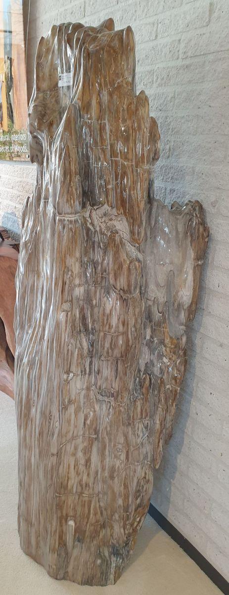 Sculpture petrified wood 14102