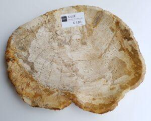 Teller versteinertes Holz 32108b