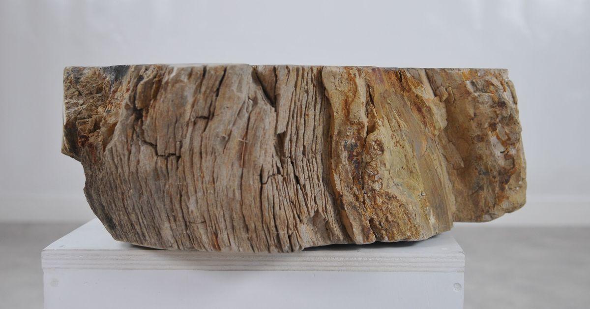 Lavabo bois pétrifié 36331