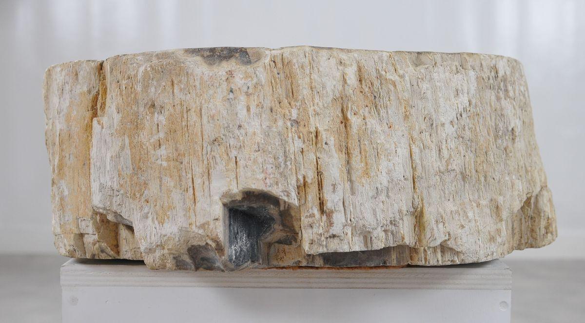Lavabo bois pétrifié 36341