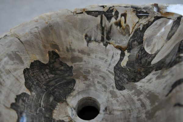 Waschbecke versteinertes Holz 36332