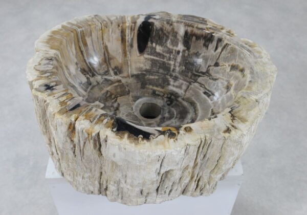 Waschbecke versteinertes Holz 36341