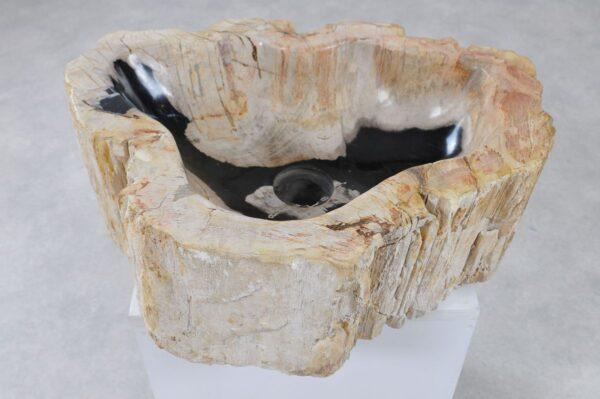 Waschbecke versteinertes Holz 36343