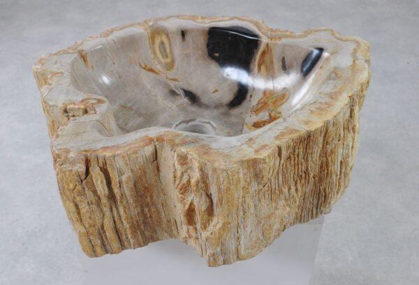 Waschbecke versteinertes Holz 36344