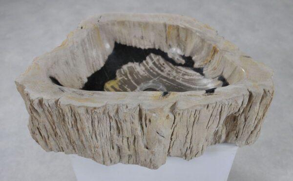 Waschbecke versteinertes Holz 36345