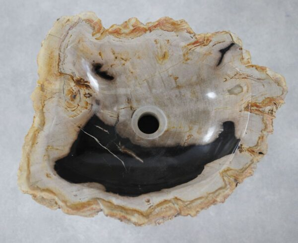 Wash hand basin petrified wood 36346