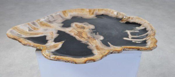 Assiette bois pétrifié 36040