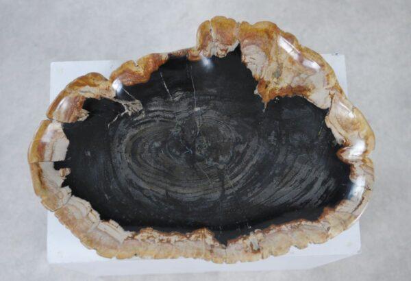 Assiette bois pétrifié 36049c