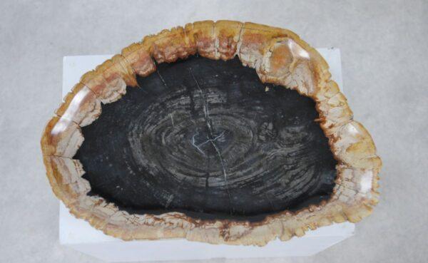 Assiette bois pétrifié 36049f