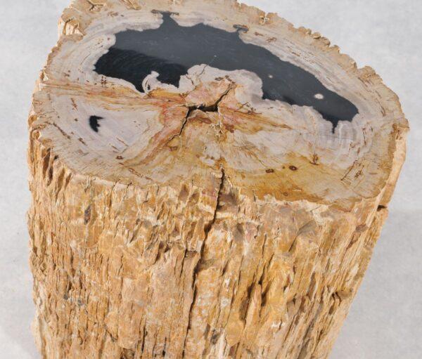 Beistelltisch versteinertes Holz 36003