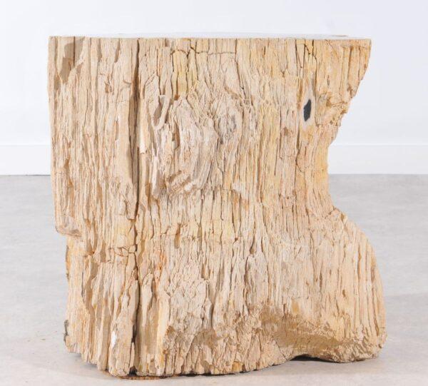 Beistelltisch versteinertes Holz 36006