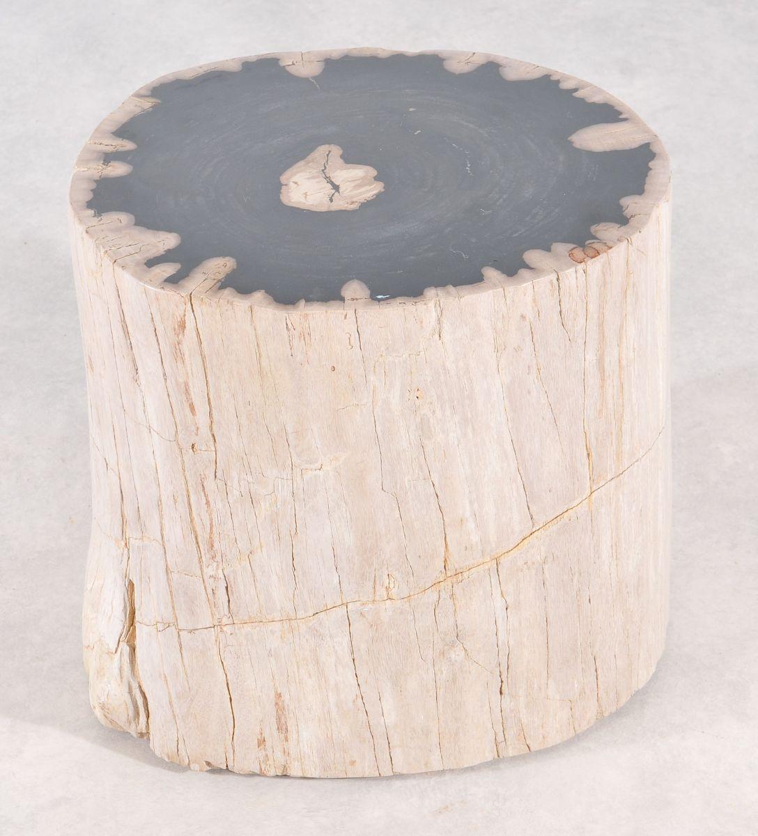 Beistelltisch versteinertes Holz 36007
