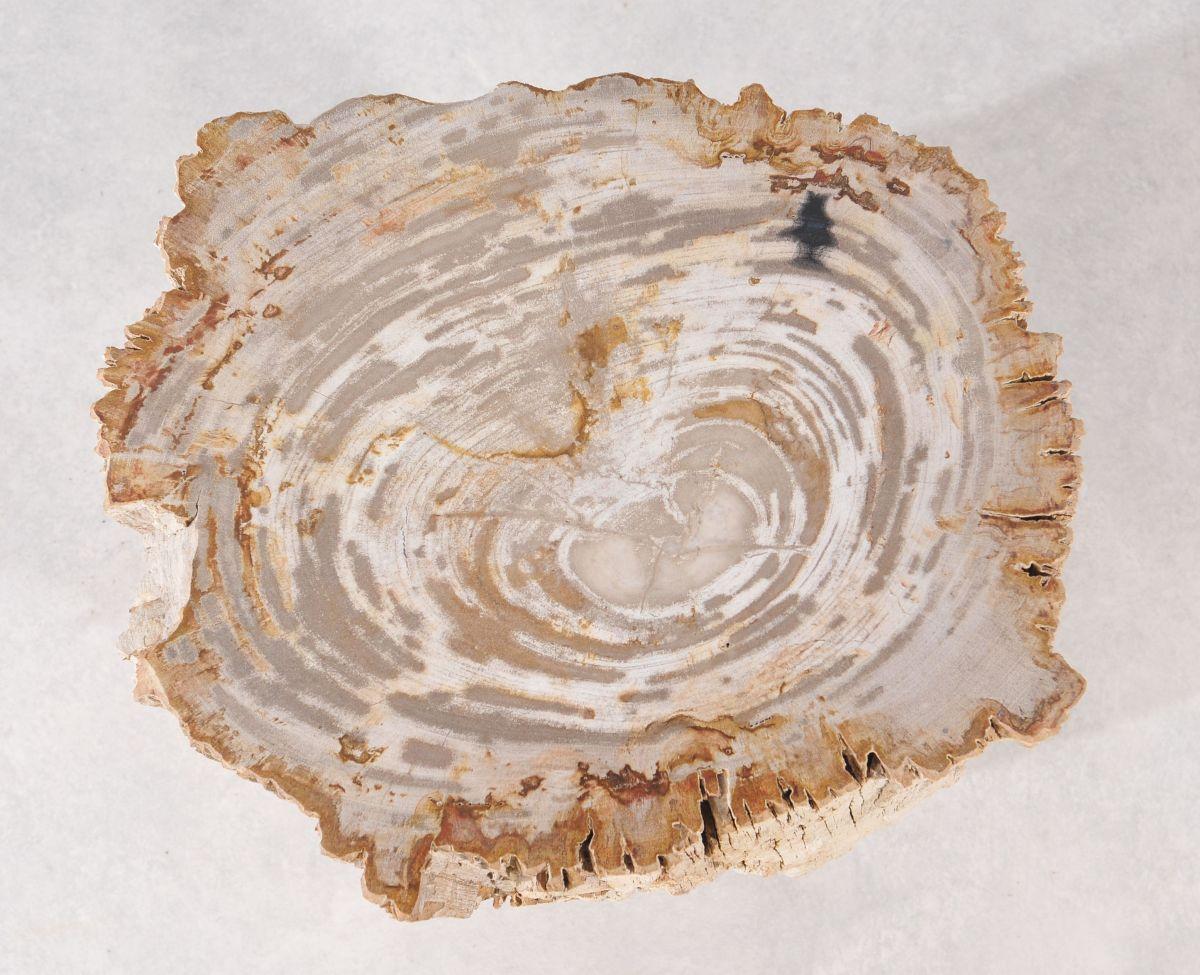 Bijzettafel versteend hout 36002