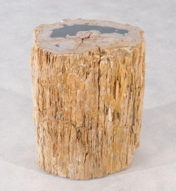 Bijzettafel versteend hout 36003
