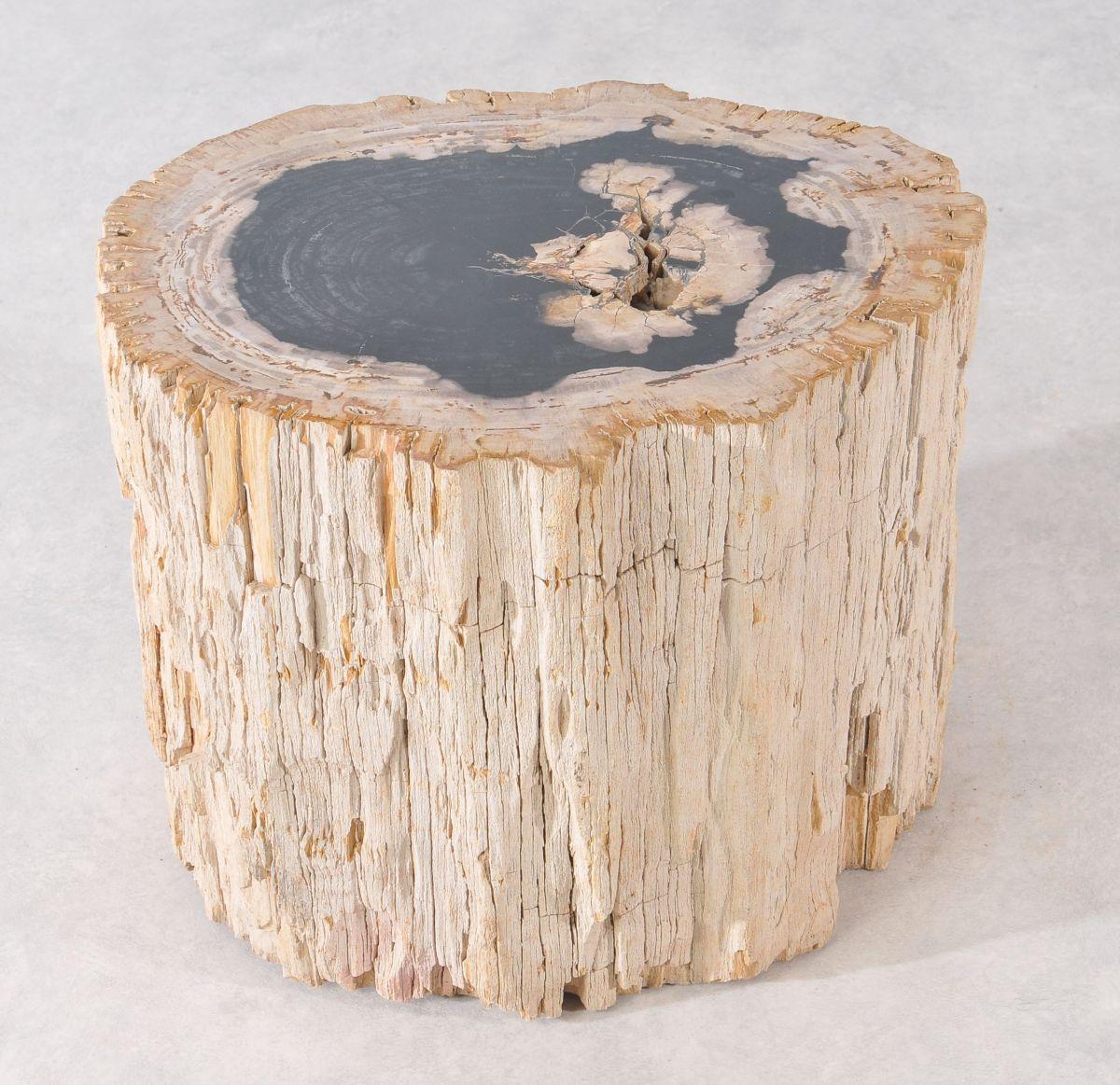 Bijzettafel versteend hout 36005