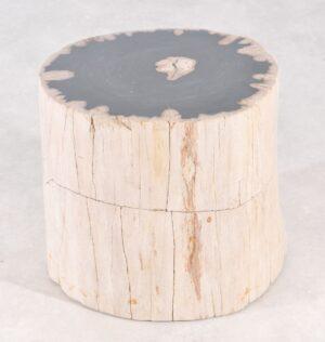 Bijzettafel versteend hout 36007