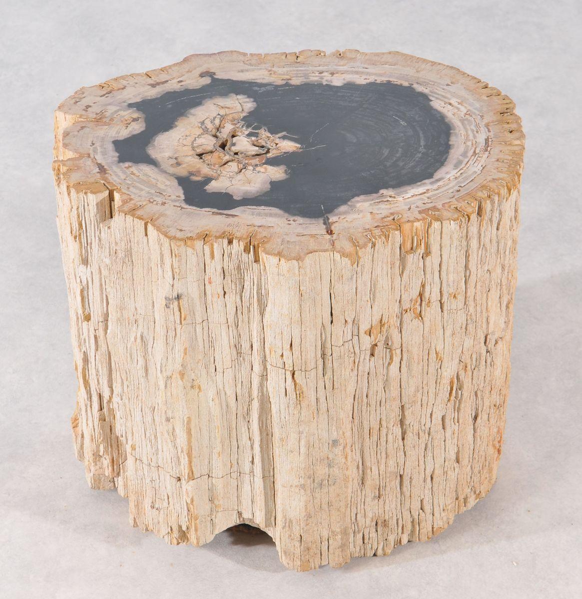 Bijzettafel versteend hout 36009