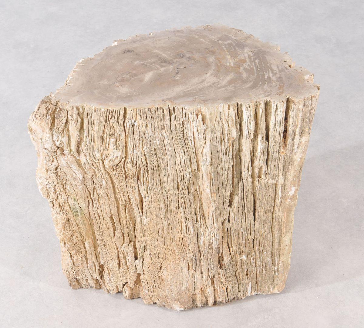 Bijzettafel versteend hout 36010