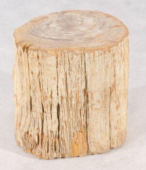 Bijzettafel versteend hout 36011