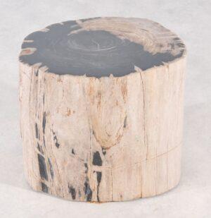 Bijzettafel versteend hout 36013
