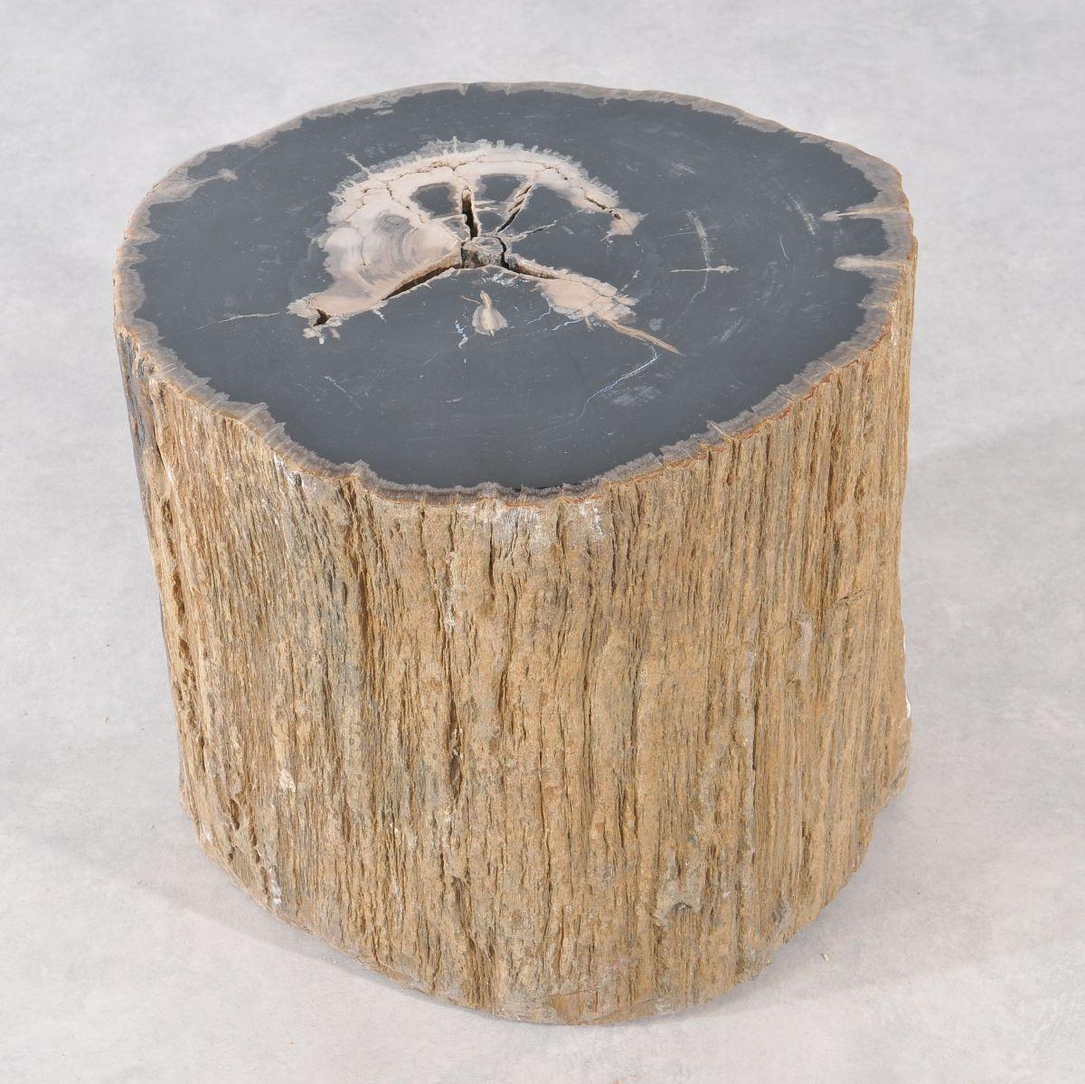 Bijzettafel versteend hout 36027