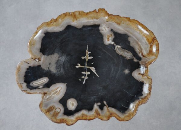 Bord versteend hout 36028