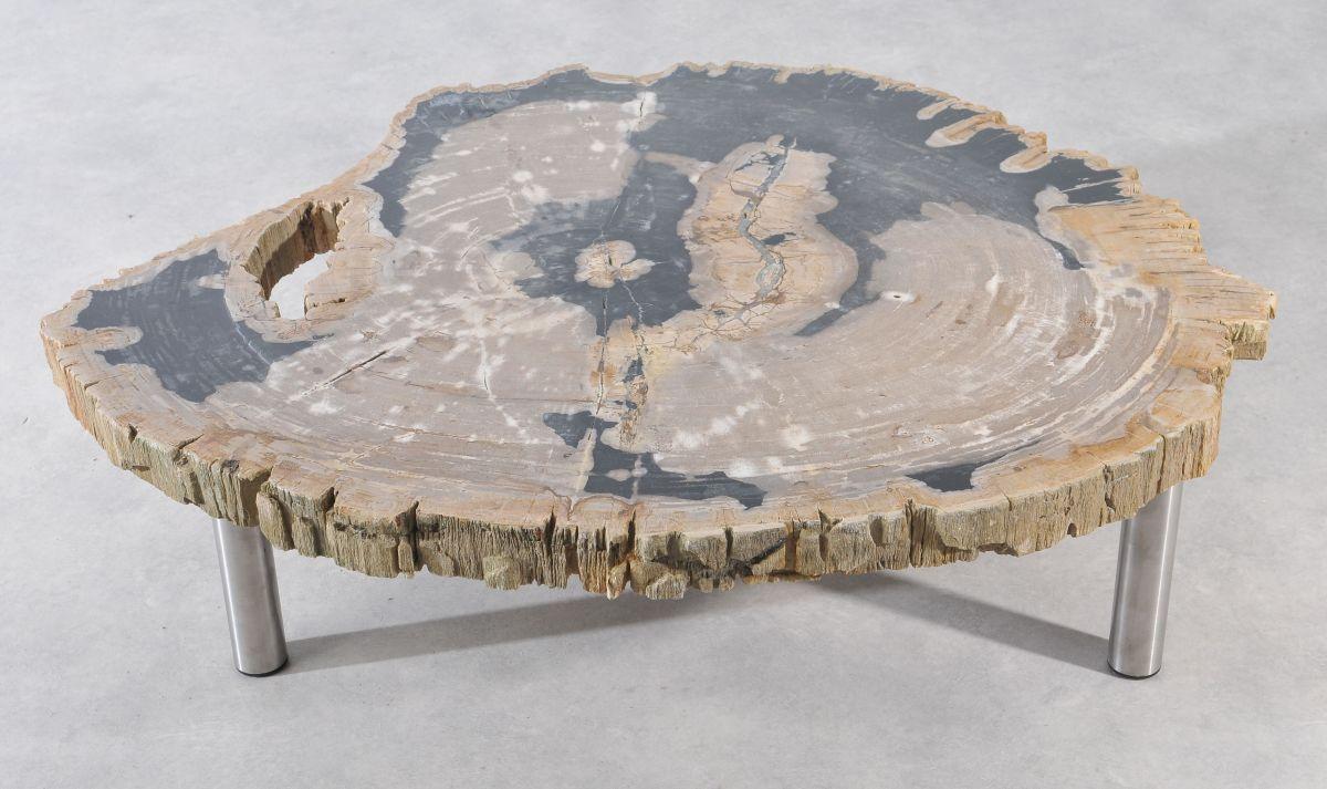 Coffee table petrified wood 36145