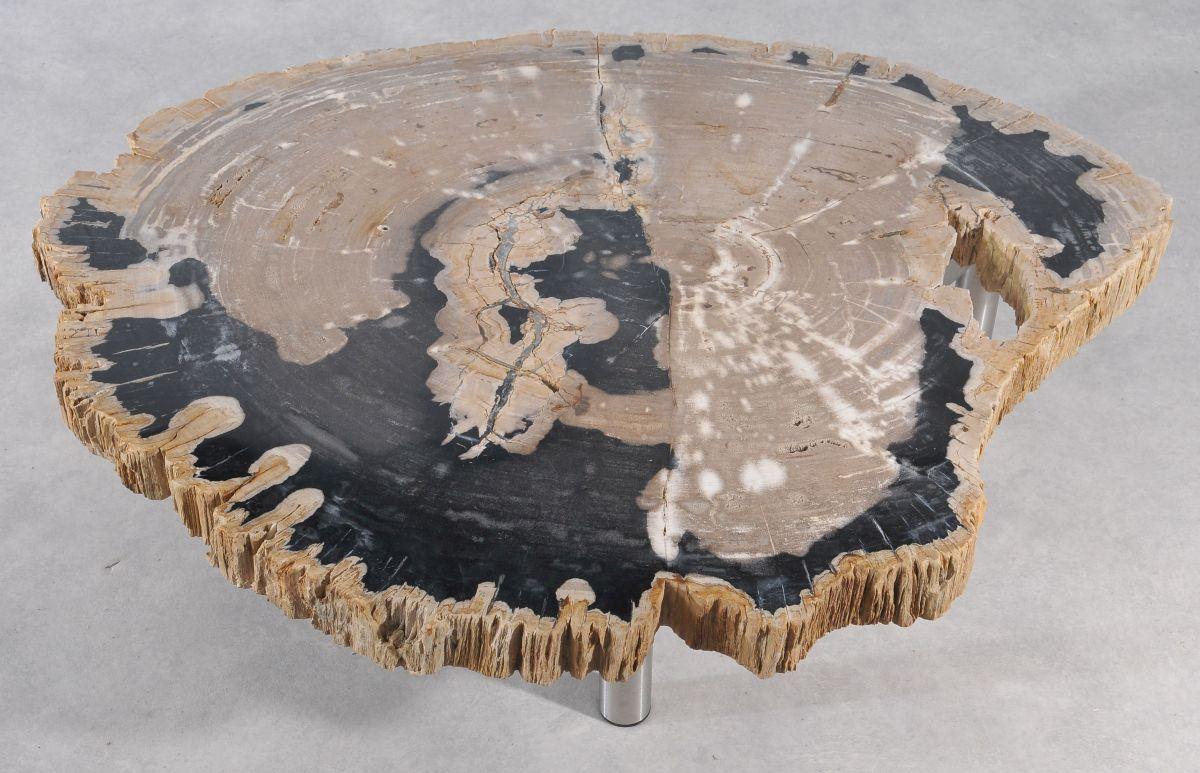 Coffee table petrified wood 36146