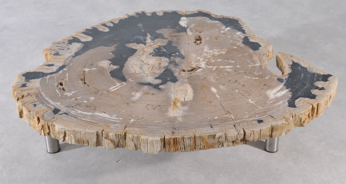 Coffee table petrified wood 36148