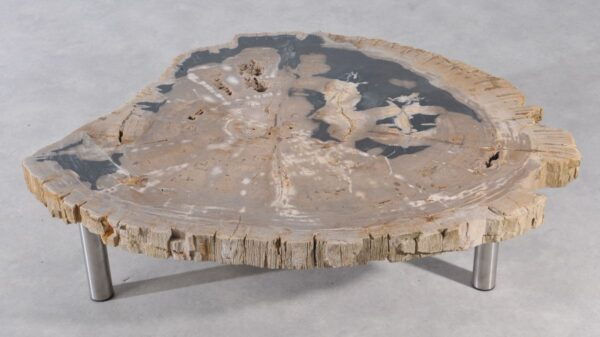 Coffee table petrified wood 36149