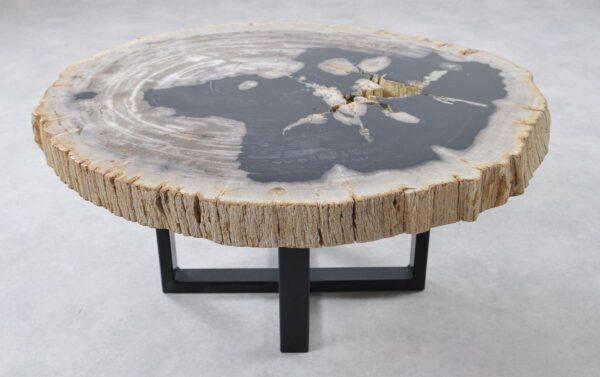 Coffee table petrified wood 36156