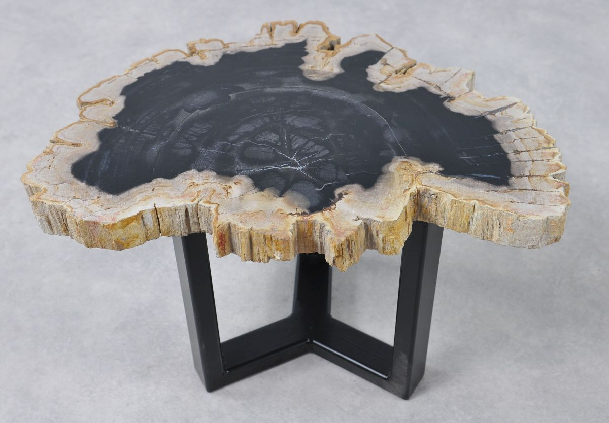 Coffee table petrified wood 36159