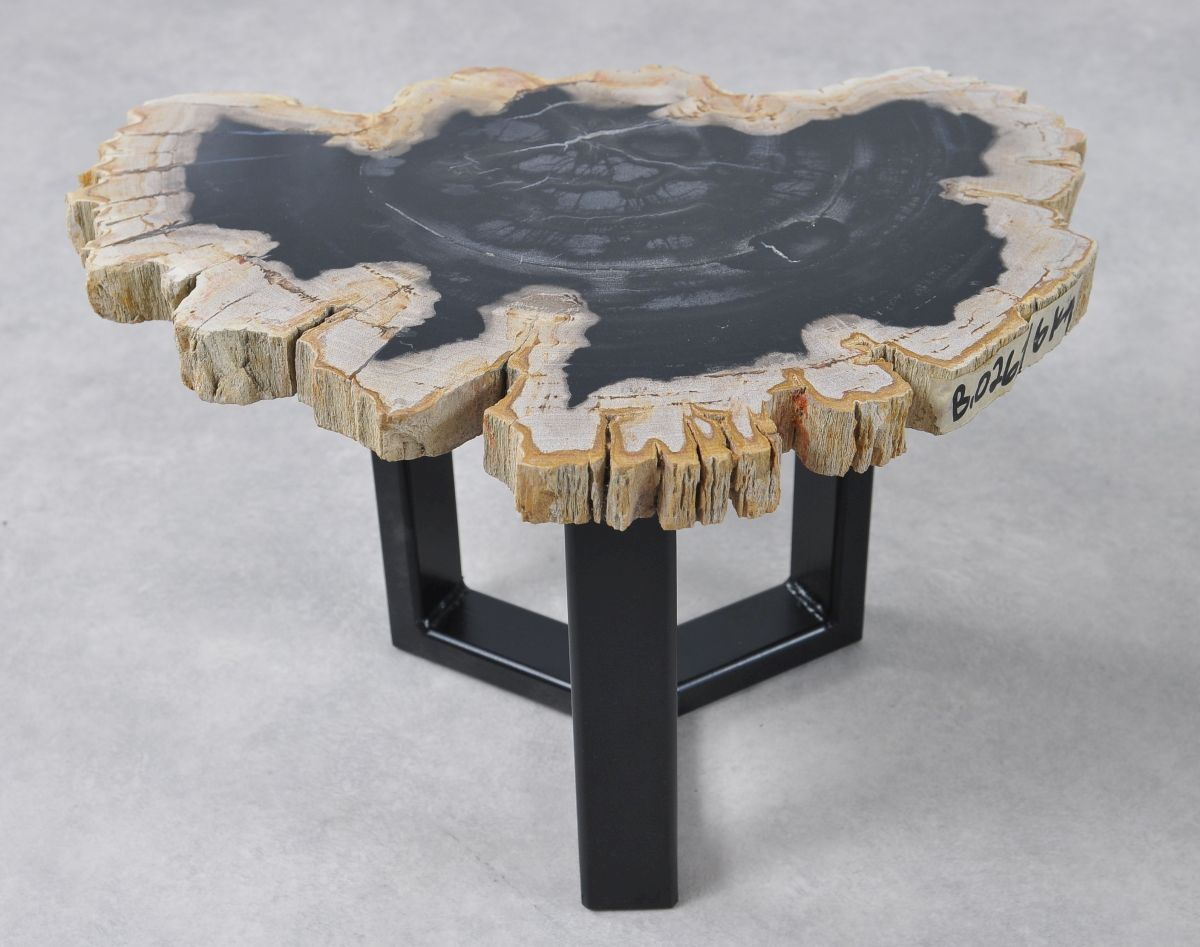 Coffee table petrified wood 36160